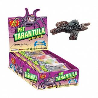 Jelly Belly Pet Tarantula Gummi Candy (Box of 24)